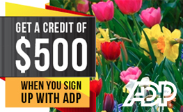 Receive up to a $500 Credit When you Sign up With ADP Payroll Services